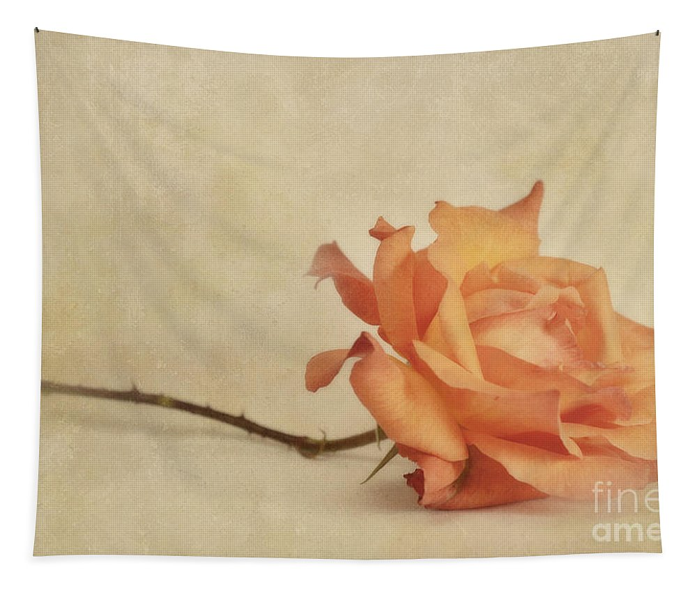 Rose Tapestry featuring the photograph Bellezza by Priska Wettstein