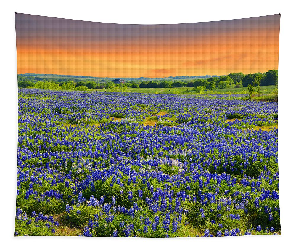 Landscape Tapestry featuring the photograph Bluebonnet Sunset by Lynn Bauer