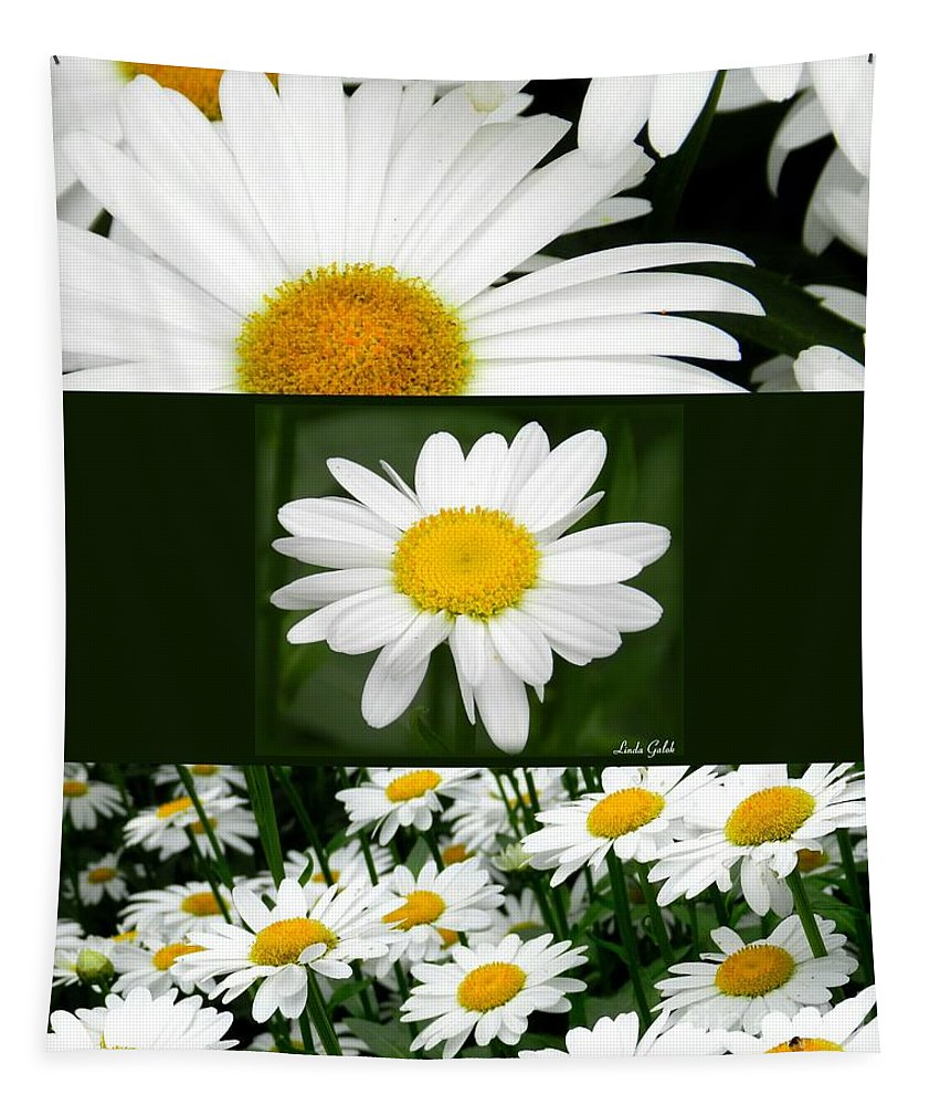 Art Tapestry featuring the photograph Daisy Collage by Linda Galok