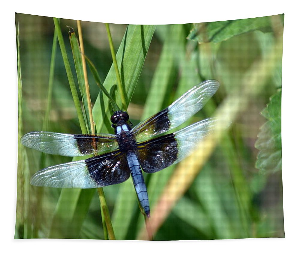 Dragonfly Tapestry featuring the photograph Dragonfly by Bonfire Photography