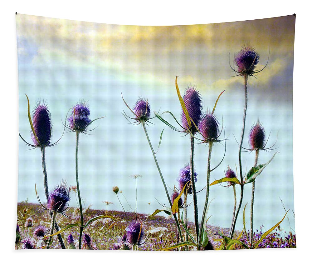 Teasels Tapestry featuring the photograph Dream Field Of Teasels by Gothicrow Images