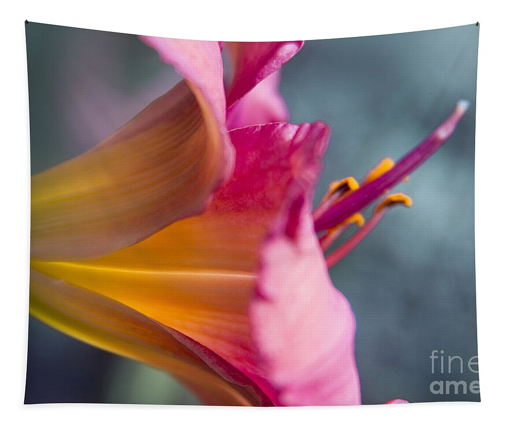 Lily Tapestry featuring the photograph Enchanting Florals by Sharon Mau