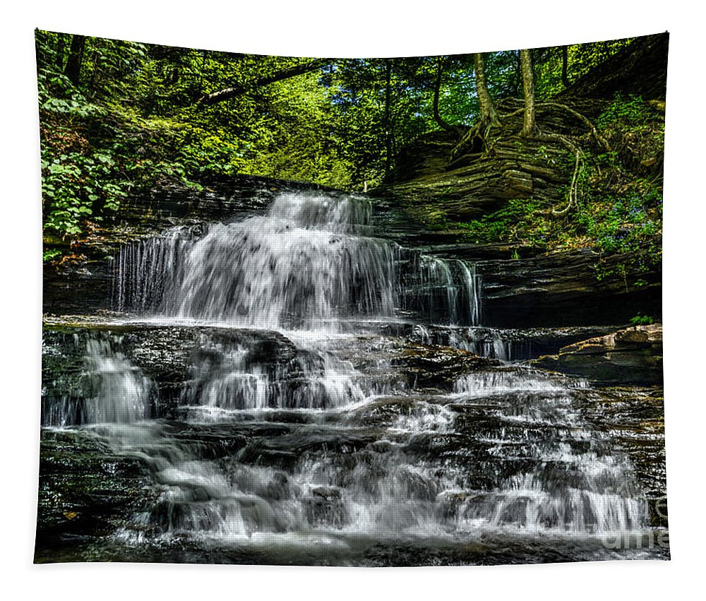 Ricketts Glen Tapestry featuring the photograph Falls by Paul W Faust - Impressions of Light