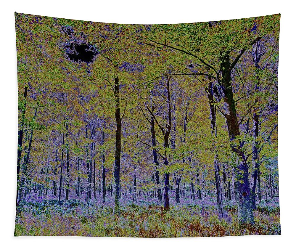 Tree Tapestry featuring the digital art Fantasy Forest Art by David Pyatt
