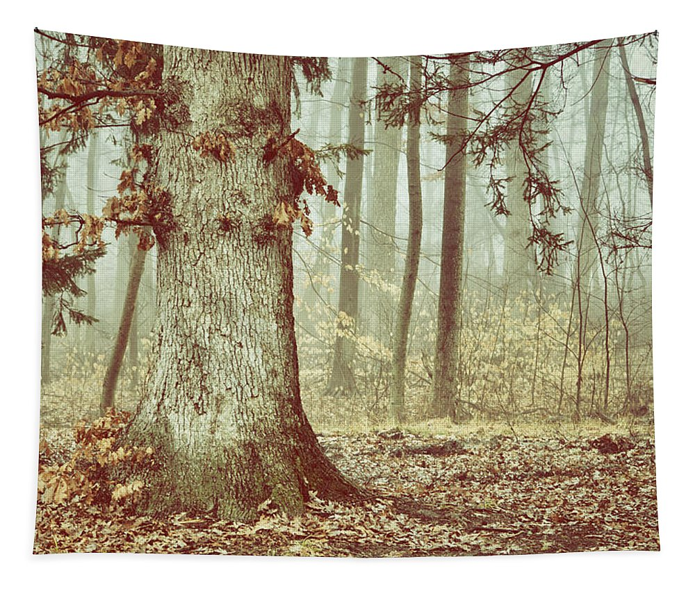 Tree Tapestry featuring the mixed media Foggy Forest by Trish Tritz