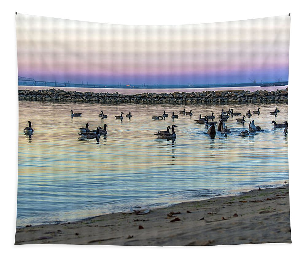 2d Tapestry featuring the photograph Geese At Dusk by Brian Wallace