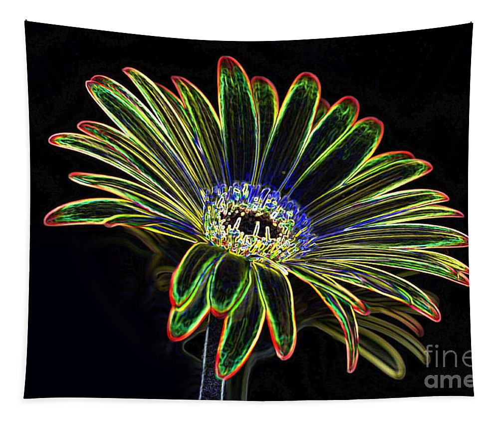 Yellow And Orange Gerbera Flower Tapestry featuring the photograph Gerbera Glow 1 by Steve Purnell