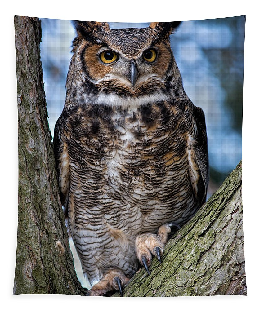 Great Horned Owl Tapestry featuring the photograph Great Horned Owl by Dale Kincaid