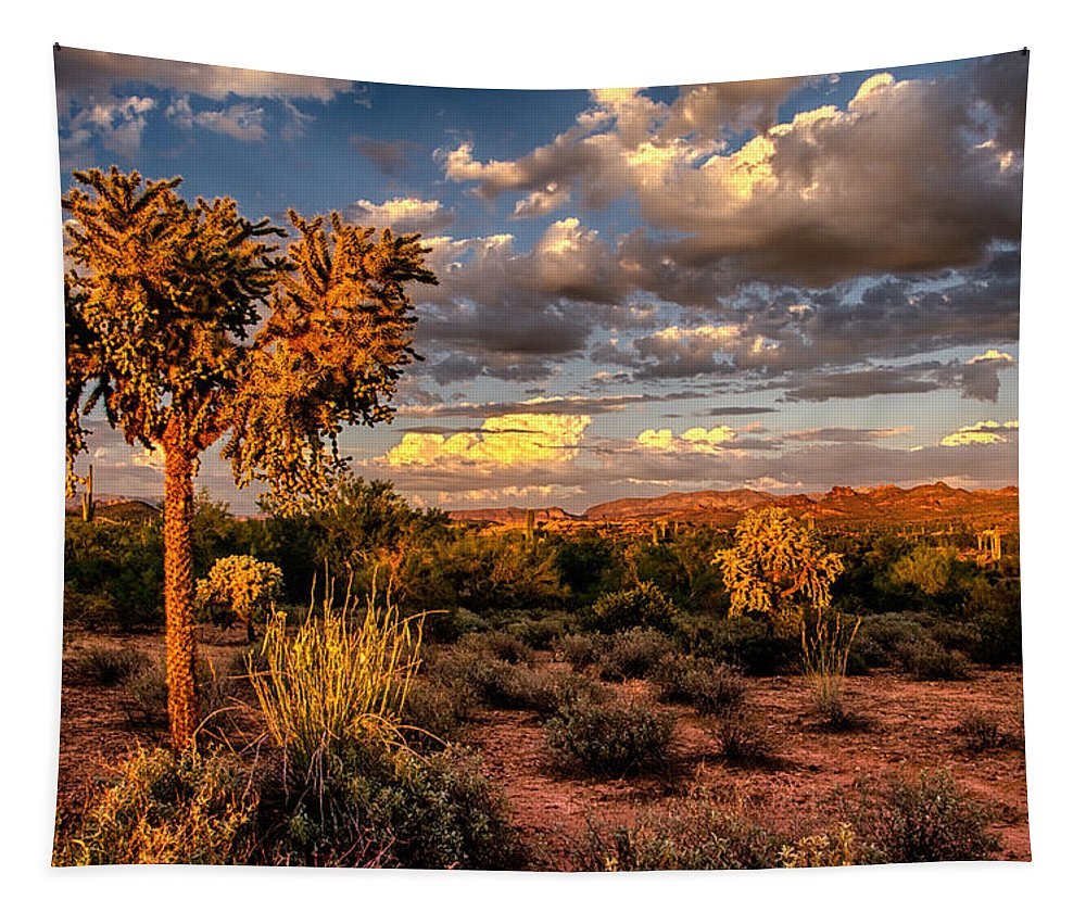 Sonoran Desert Tapestry featuring the photograph In The Golden Hour by Saija Lehtonen