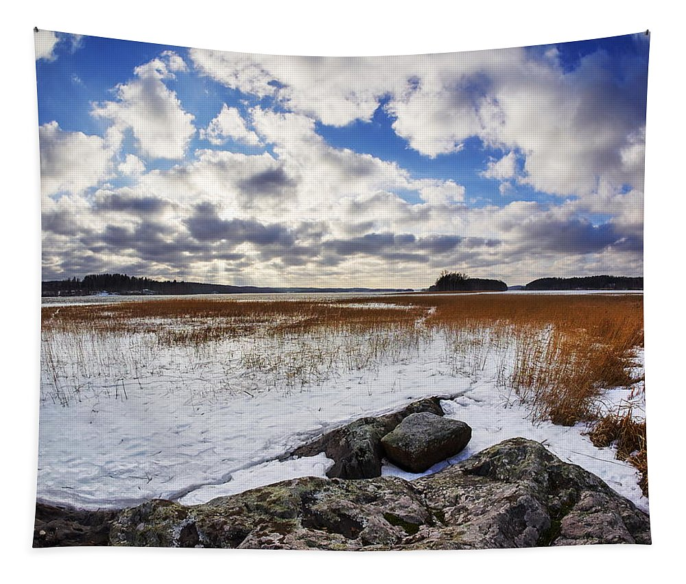 Finland Tapestry featuring the photograph Kulovesi Early Spring by Jouko Lehto