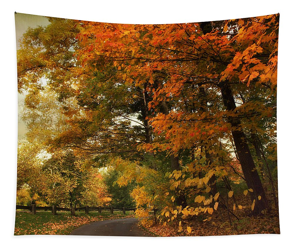 Autumn Tapestry featuring the photograph Leaf Peeping by Jessica Jenney