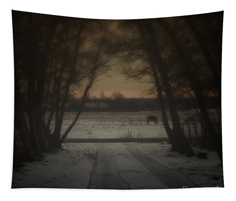 Autumn Tapestry featuring the photograph My Dark Forest by Stelios Kleanthous
