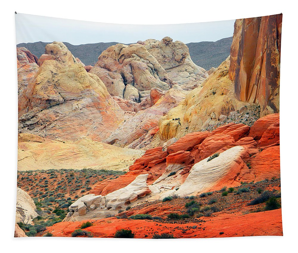 Rainbow Vista Trail Tapestry featuring the photograph Painted Desert by Frank Wilson