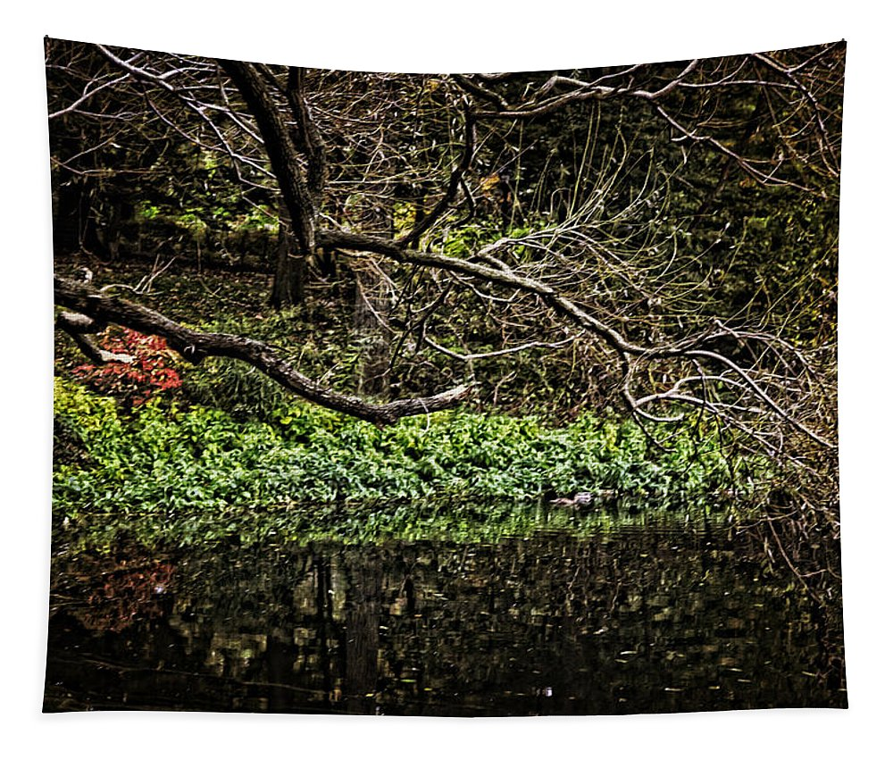 Pond Tapestry featuring the photograph Pond Reflection by Madeline Ellis