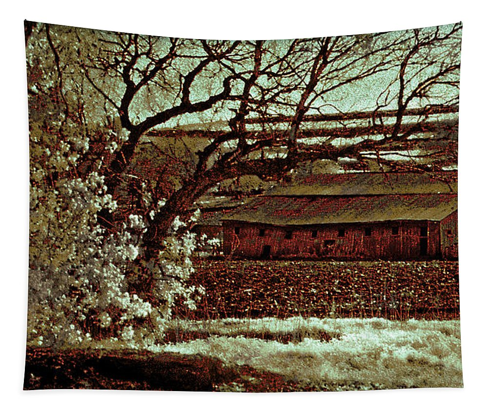 Barns Tapestry featuring the photograph Red Barn by John Anderson