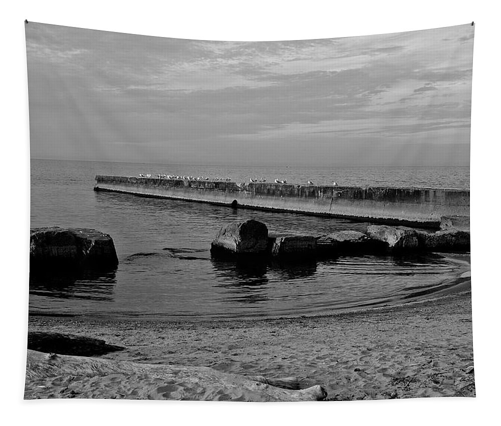 Seagull Tapestry featuring the photograph Seagull Serenity by Frozen in Time Fine Art Photography