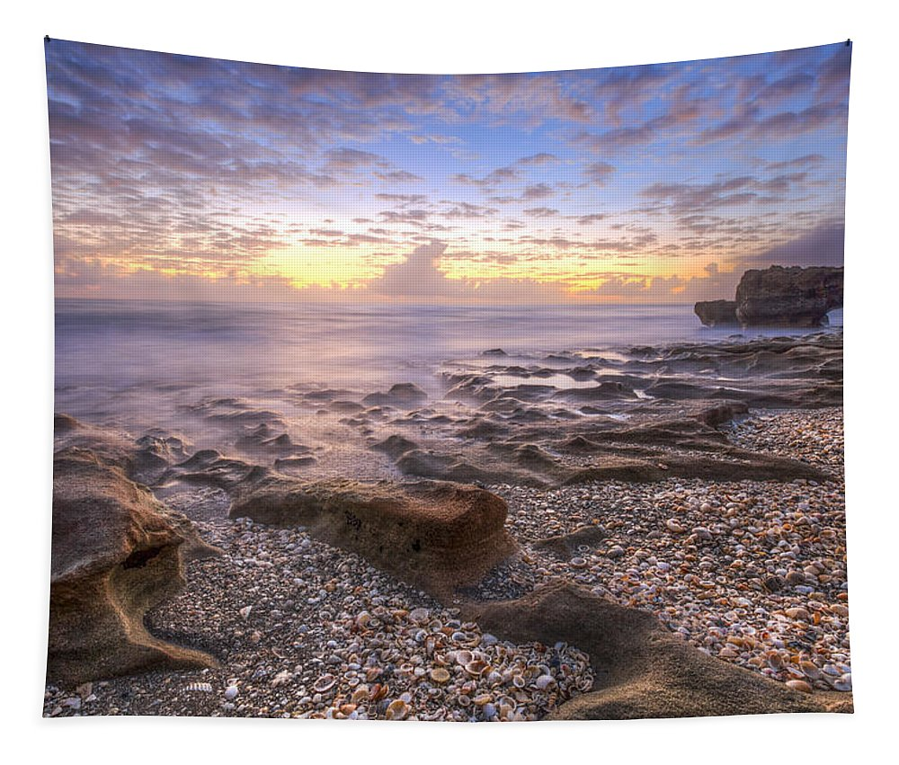 Clouds Tapestry featuring the photograph Seashells by Debra and Dave Vanderlaan