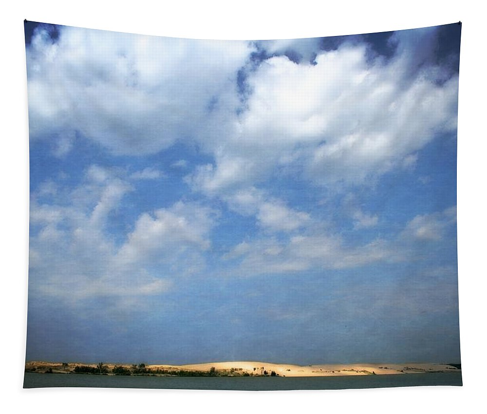 Silver Lake Tapestry featuring the photograph Silver Lake Sand Dunes by Michelle Calkins