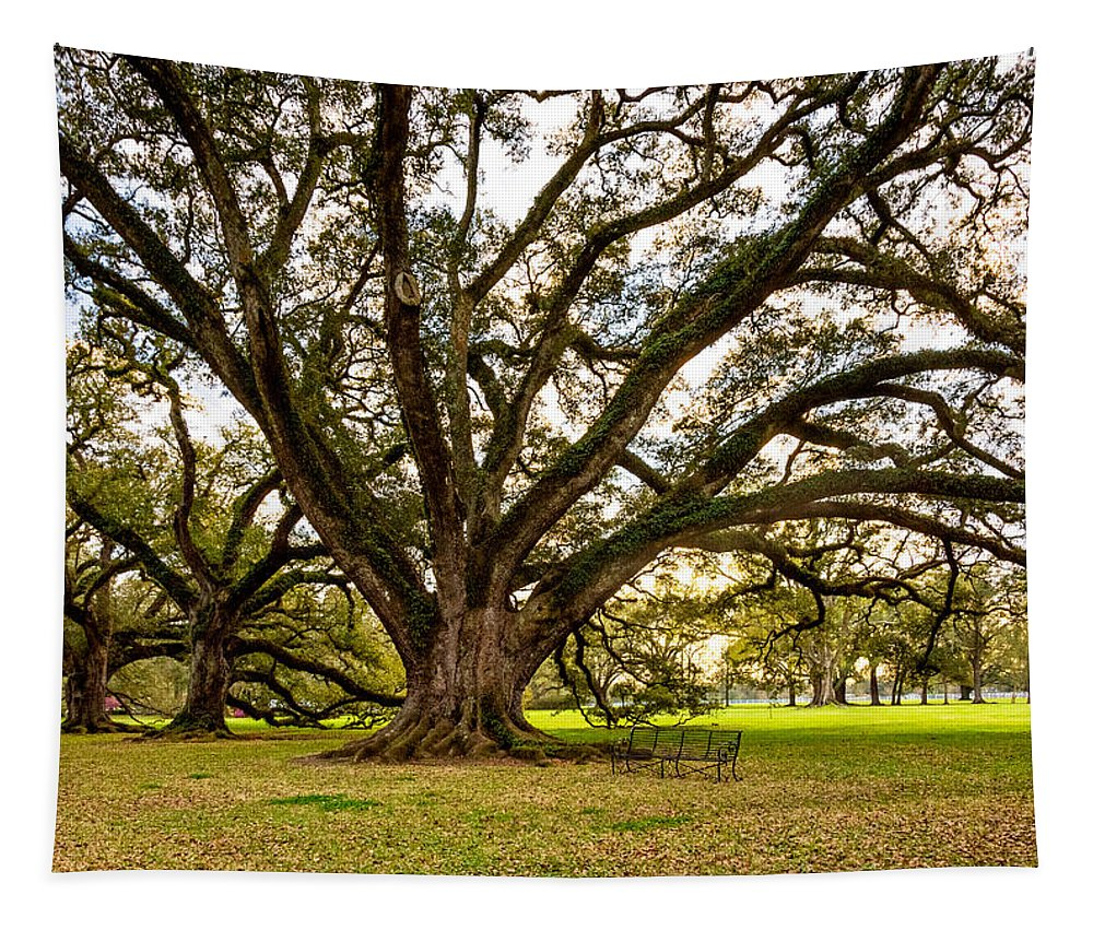 Oak Alley Plantation Tapestry featuring the photograph Sit A Spell... by Steve Harrington
