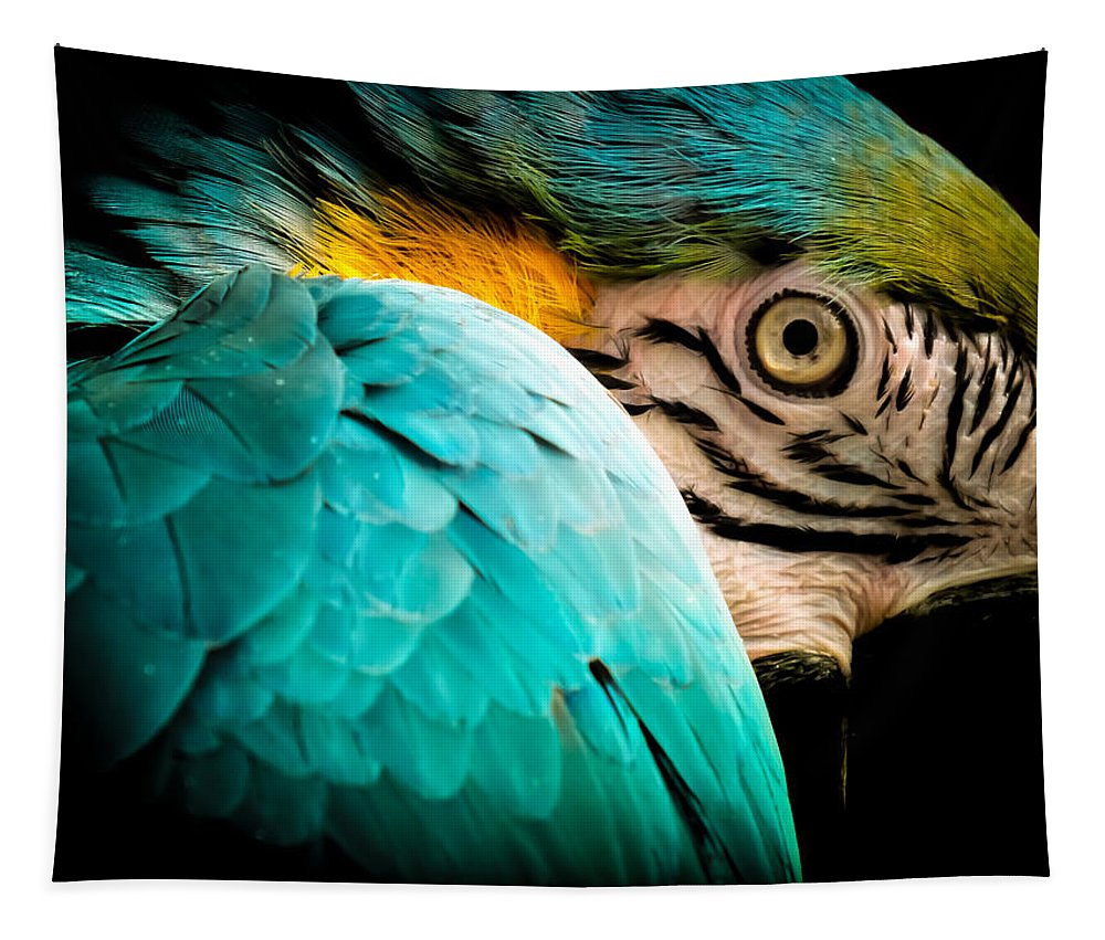 Macaws Tapestry featuring the photograph Sleeping Beauty by Karen Wiles
