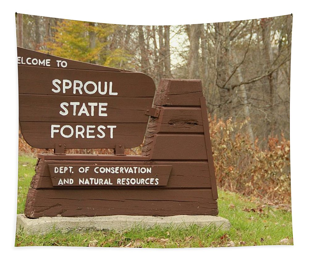 Sproul State Forest Tapestry featuring the photograph Sproul State Forest by Dan Sproul
