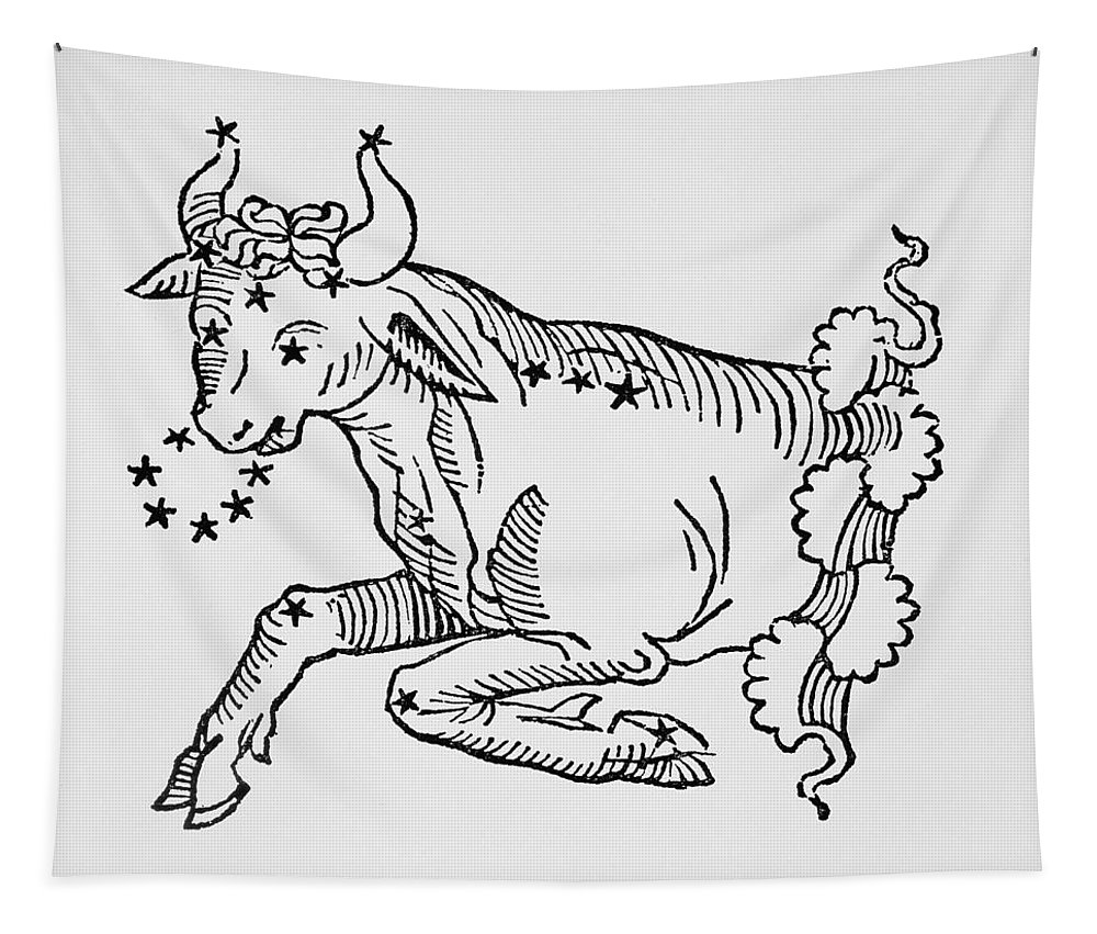 Taurus Tapestry featuring the drawing Taurus by Italian School