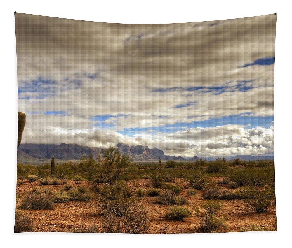 Arizona Tapestry featuring the photograph The Desert Southwest by Saija Lehtonen