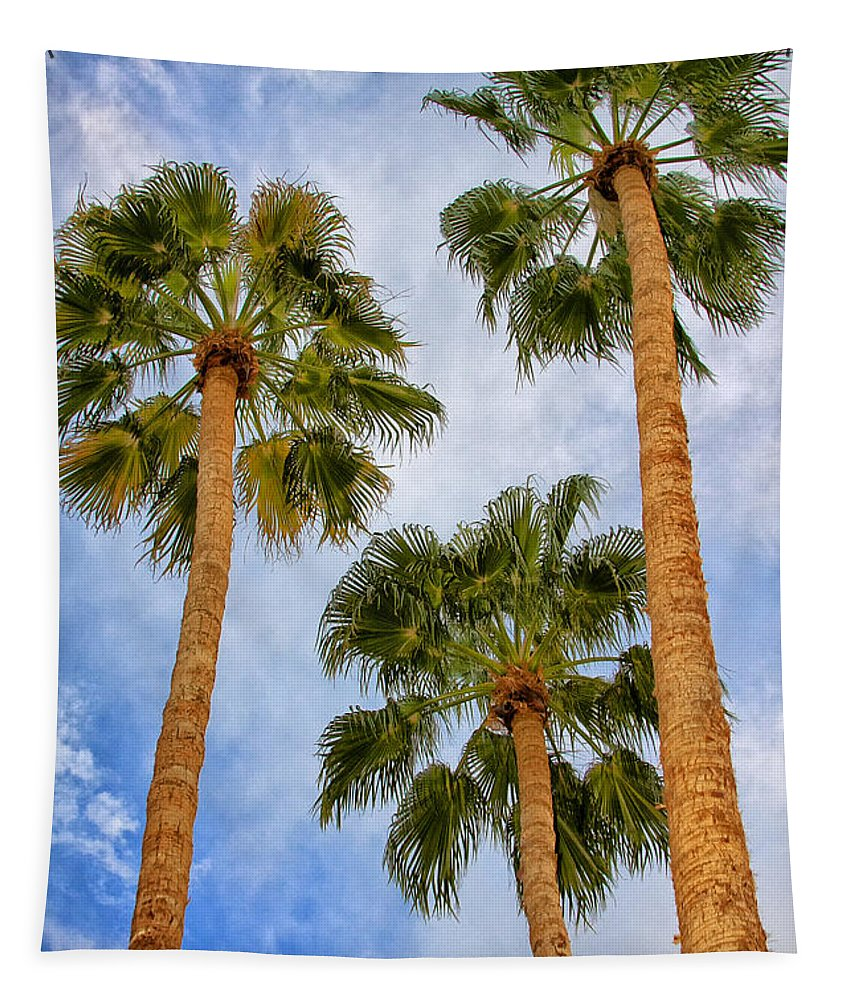 Palm Springs Tapestry featuring the photograph Three Palms Palm Springs by William Dey
