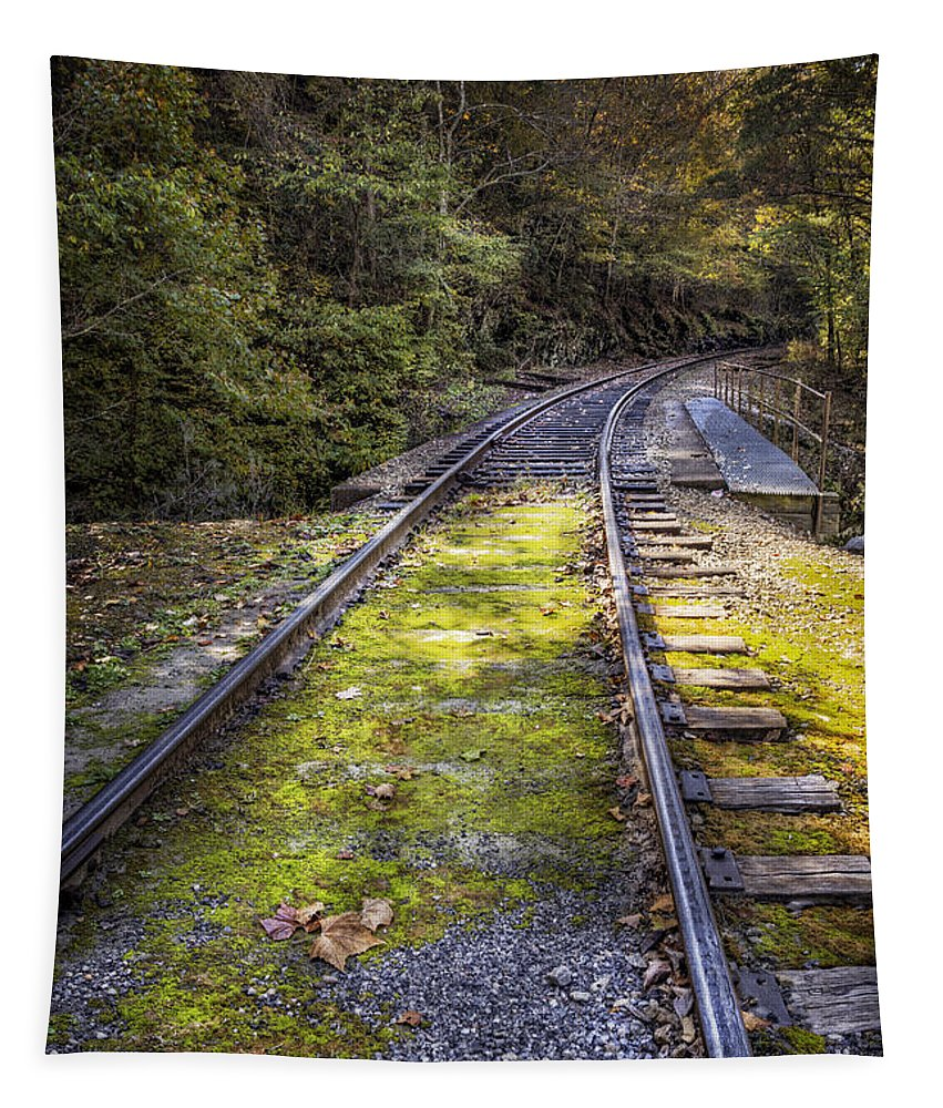 Appalachia Tapestry featuring the photograph Tracks Along The River by Debra and Dave Vanderlaan