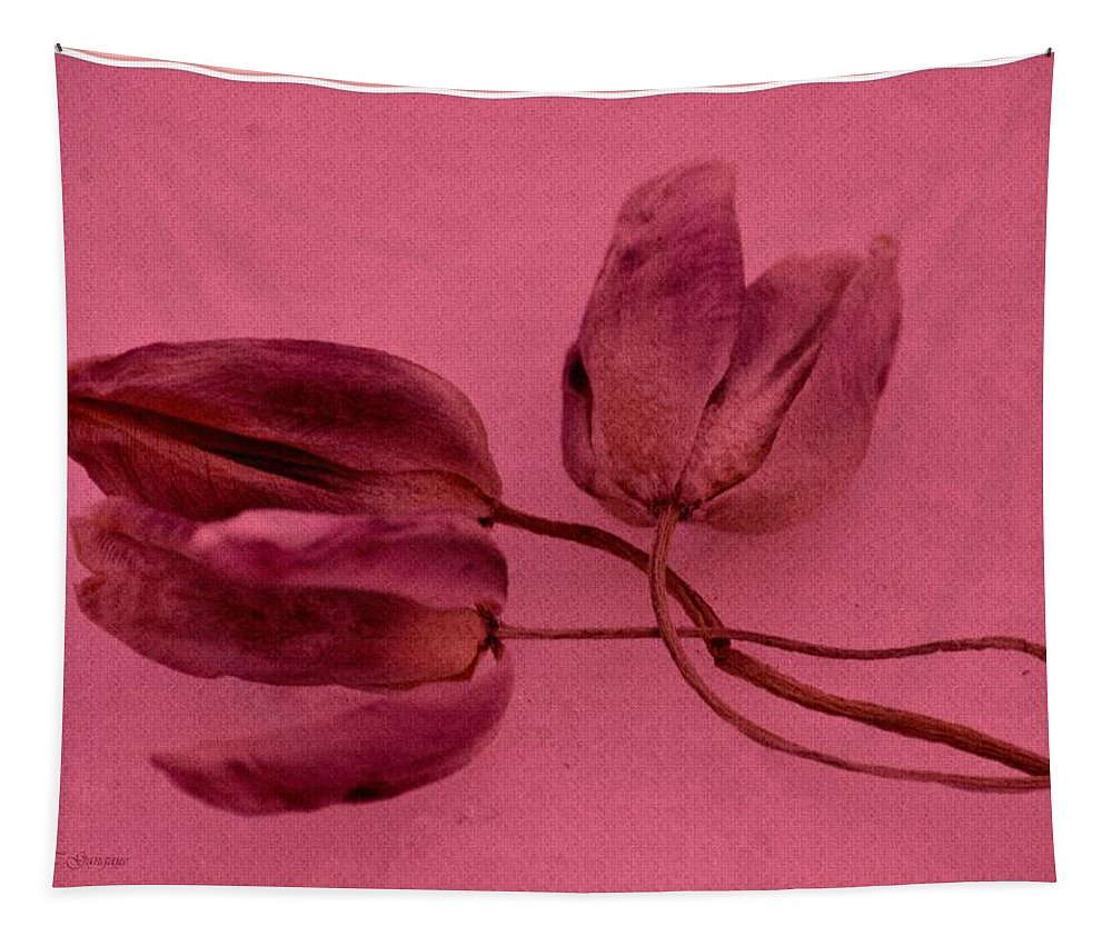Tulip Love Tapestry featuring the photograph Tulip Lover by Sonali Gangane