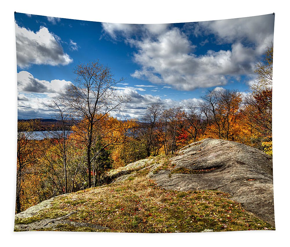 Adirondack's Tapestry featuring the photograph View From The Eagle Bay Rocks by David Patterson