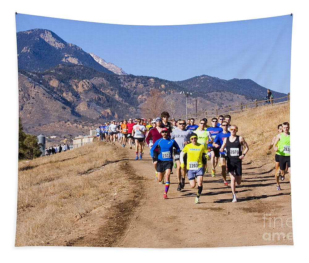 Runners Tapestry featuring the photograph Winter Series II by Steve Krull