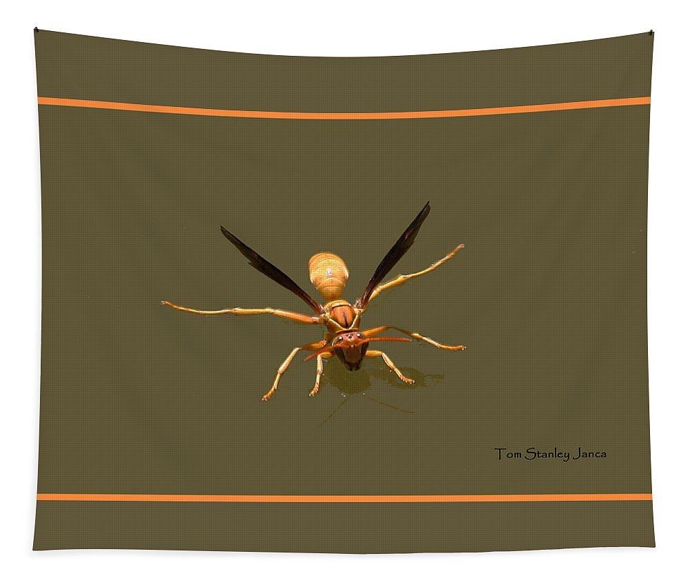 Yellow Jacket Wasp Tapestry featuring the photograph Yellow Jacket Wasp by Tom Janca