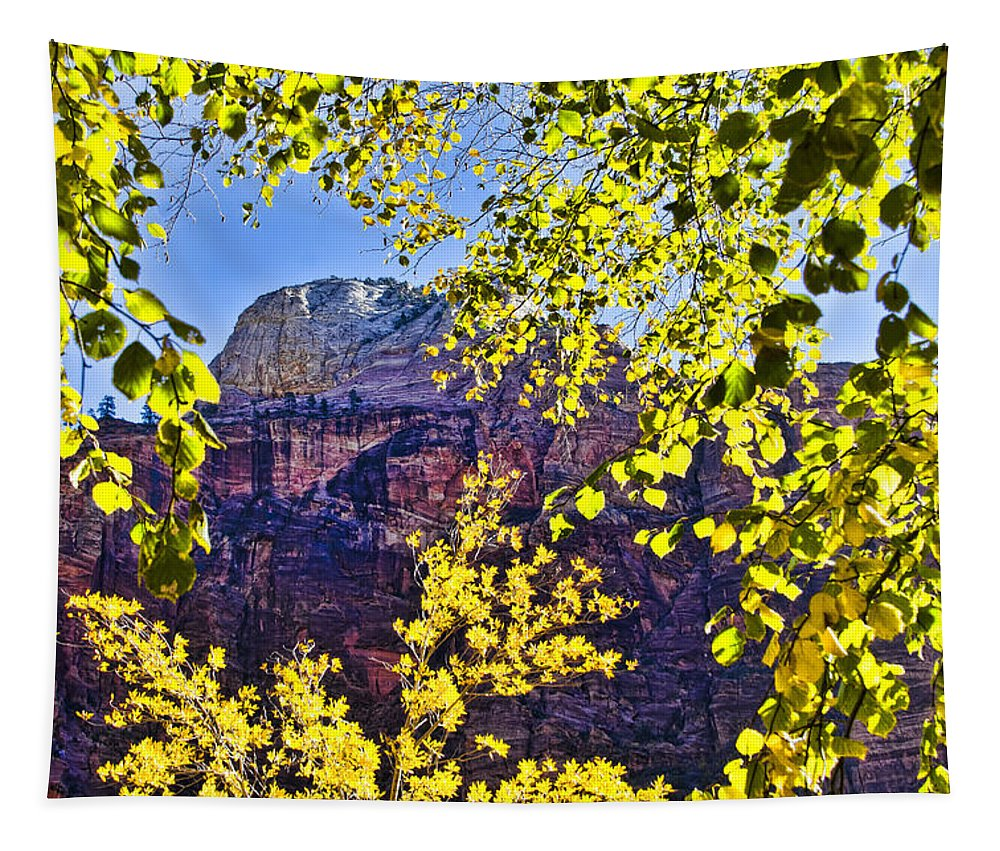 Zion National Park Utah Tapestry featuring the photograph Zion National Park by Jon Berghoff