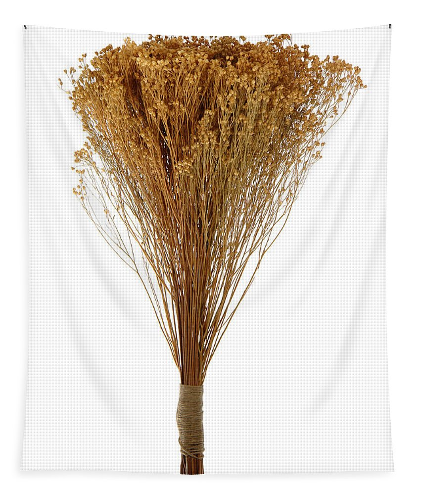 Aromatic Tapestry featuring the photograph Dry Flowers Bunch by Olivier Le Queinec