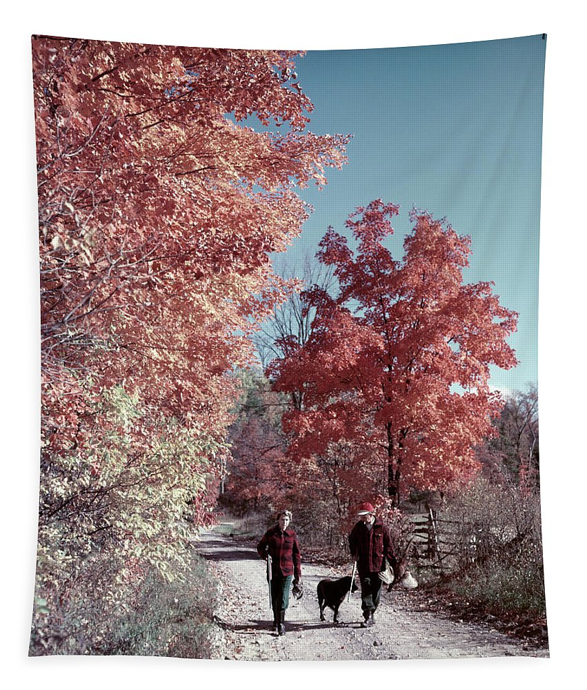 Photography Tapestry featuring the photograph 1950s 1960s Senior Couple Man Woman by Vintage Images