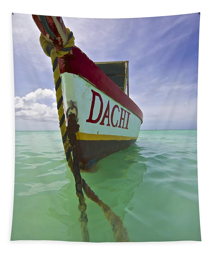 Aqua Tapestry featuring the photograph Anchored Colorful Fishing Boat Of Aruba II by David Letts