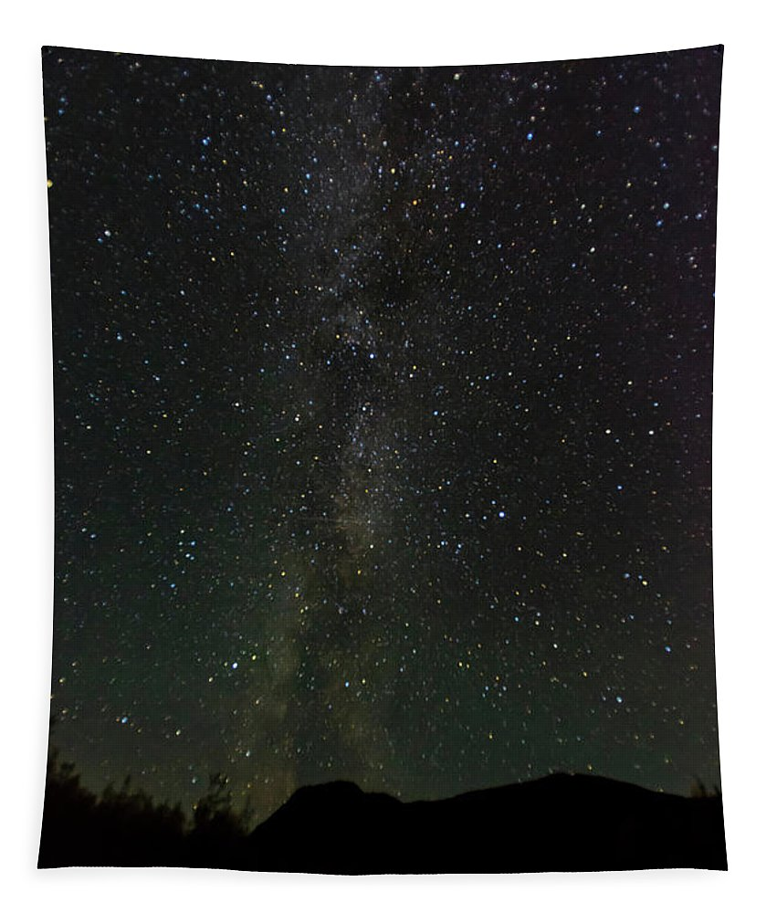 Photography Tapestry featuring the photograph Aurora Borealis, Kantishna, Alaska by Panoramic Images