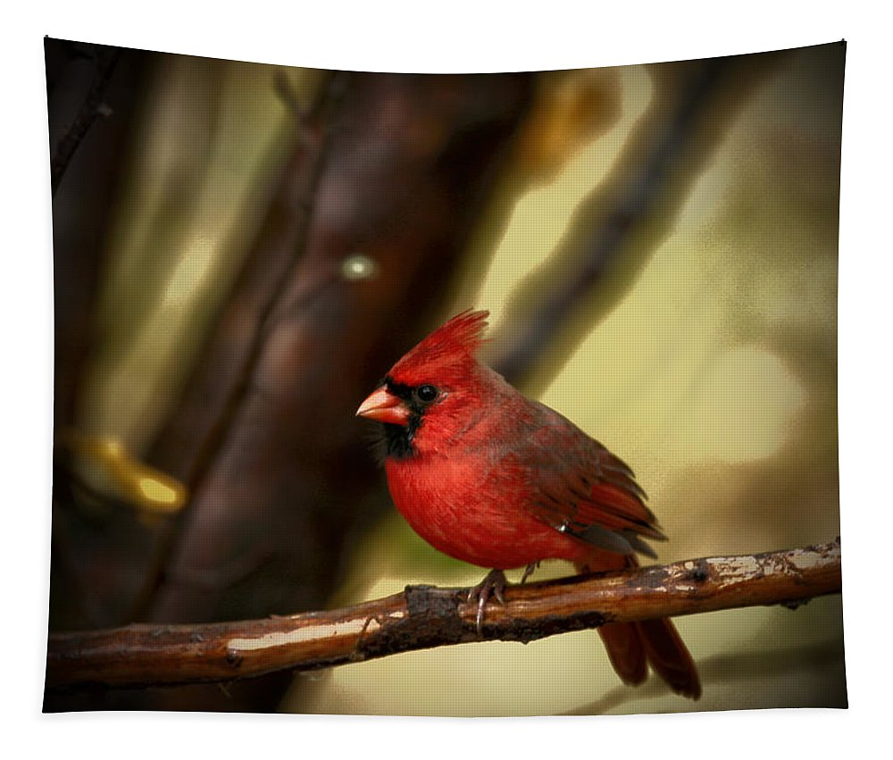 Red Cardinal Tapestry featuring the photograph Cardinal Pose by Karol Livote