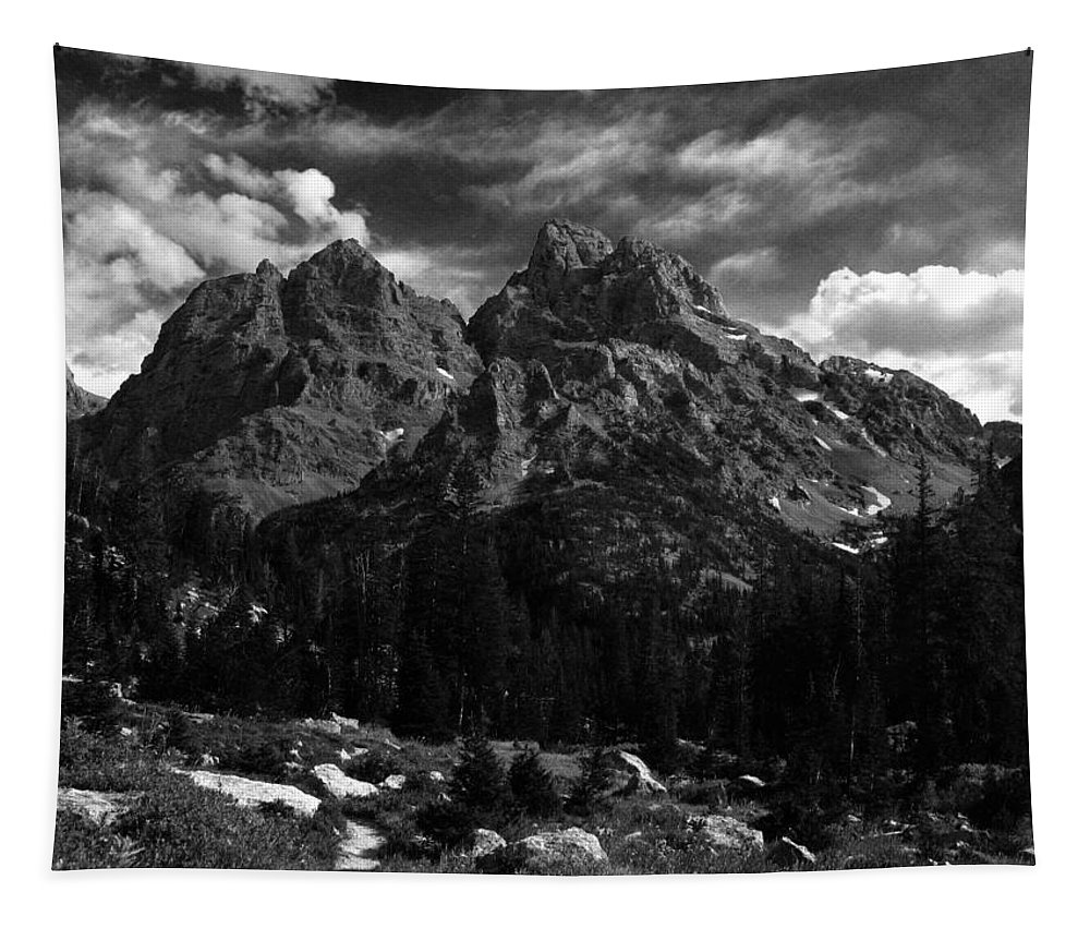 Salani Photographs Tapestry featuring the photograph Cathedral Group From The Northwest by Raymond Salani III