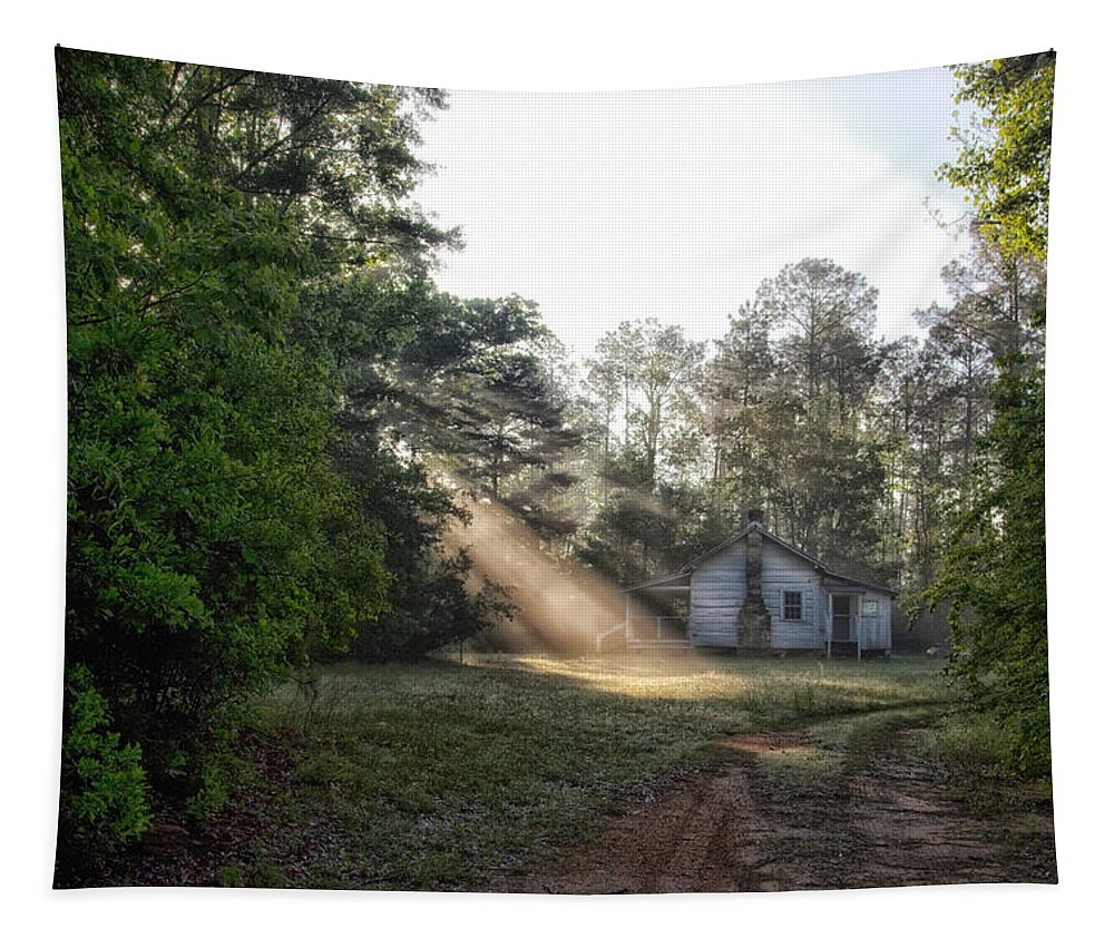 Sunshine Tapestry featuring the photograph Crepuscular Rays In Alabama by Mountain Dreams
