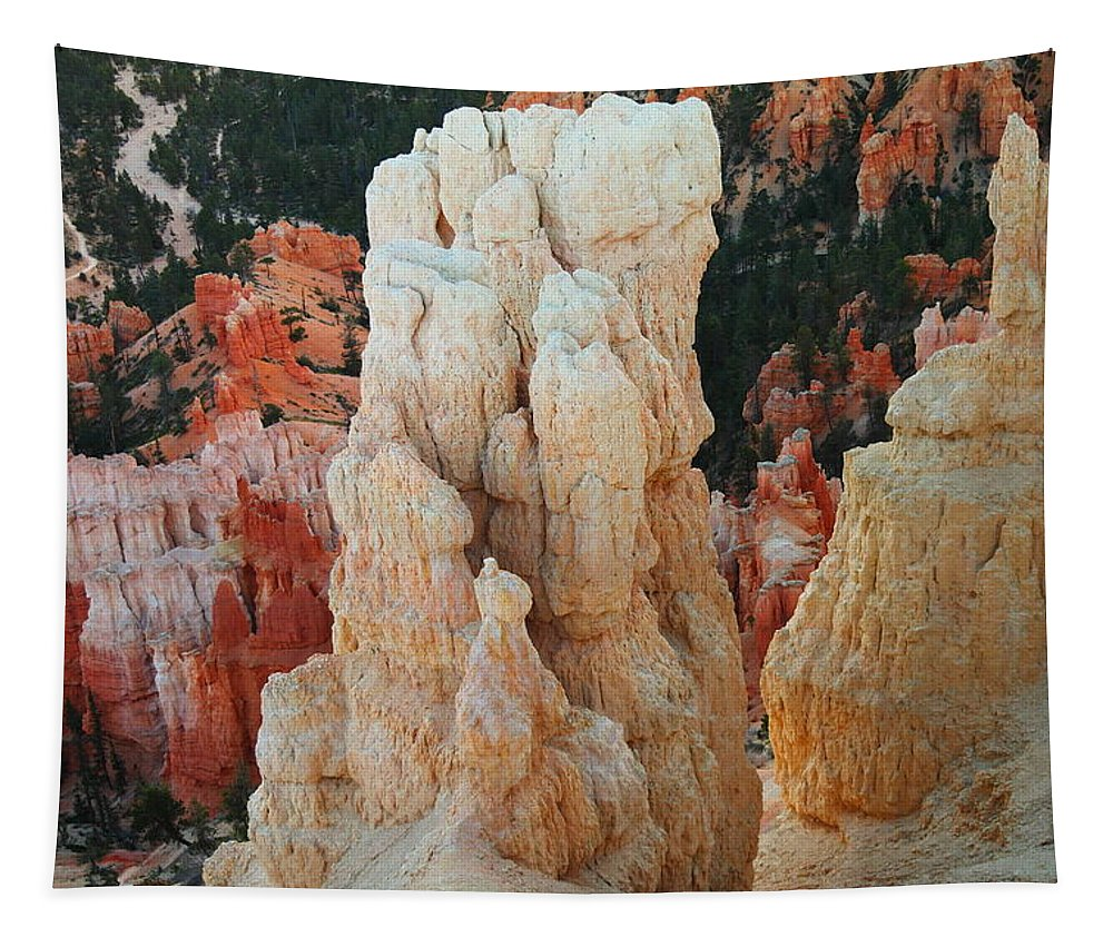 Rocks Tapestry featuring the photograph Down Into Bryce by Jeff Swan