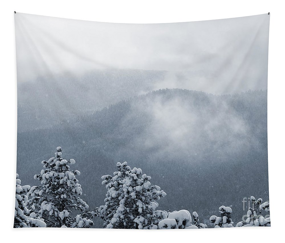 Beautiful Tapestry featuring the photograph Fresh Snow by Steve Krull