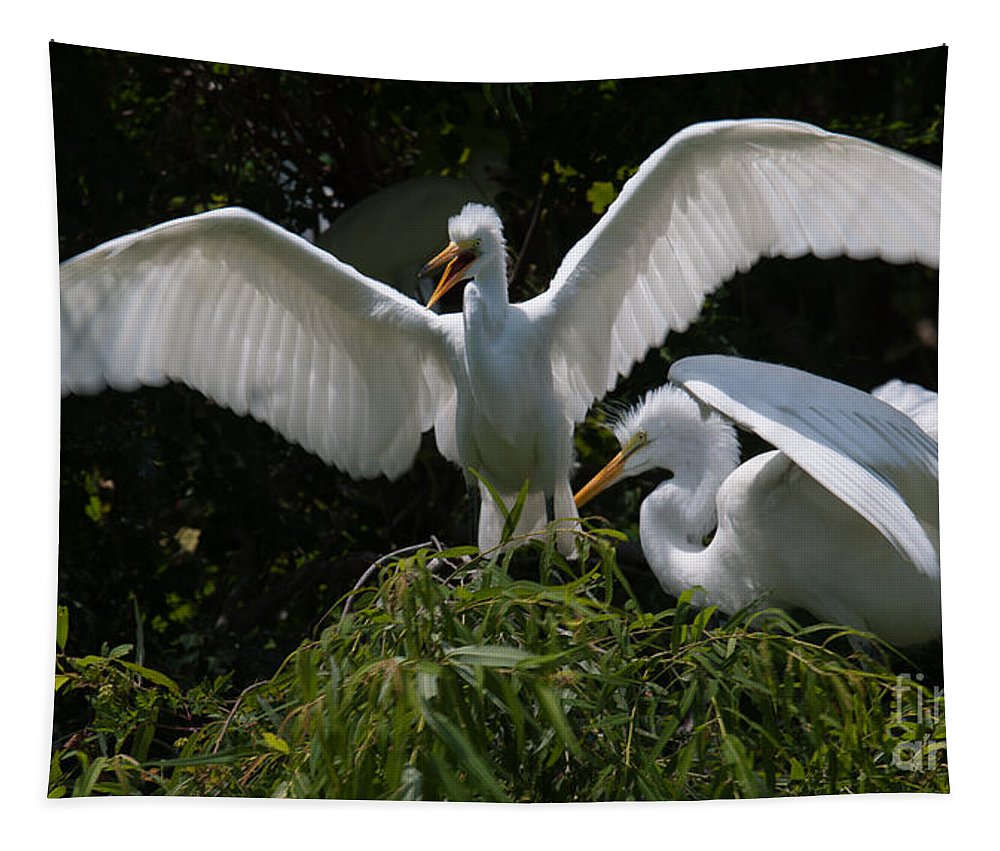 Egret Tapestry featuring the photograph Prepare For Flight by Dale Powell
