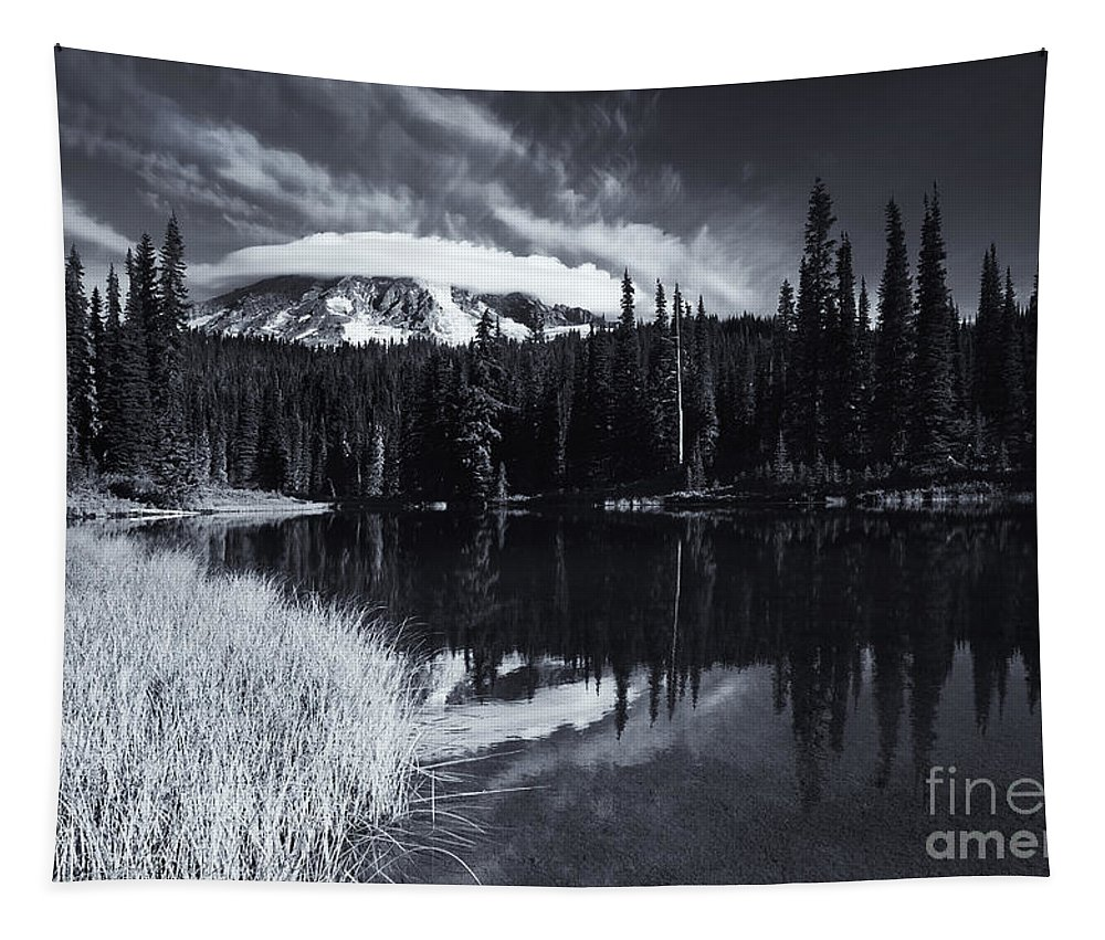 Rainier Tapestry featuring the photograph Rainier Capped by Mike Dawson
