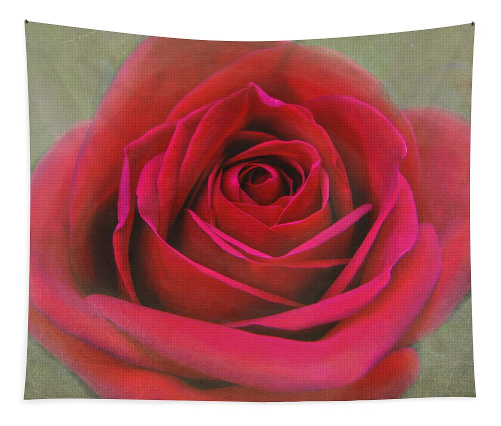 Rose Tapestry featuring the photograph Red Rose Macro by Sandi OReilly