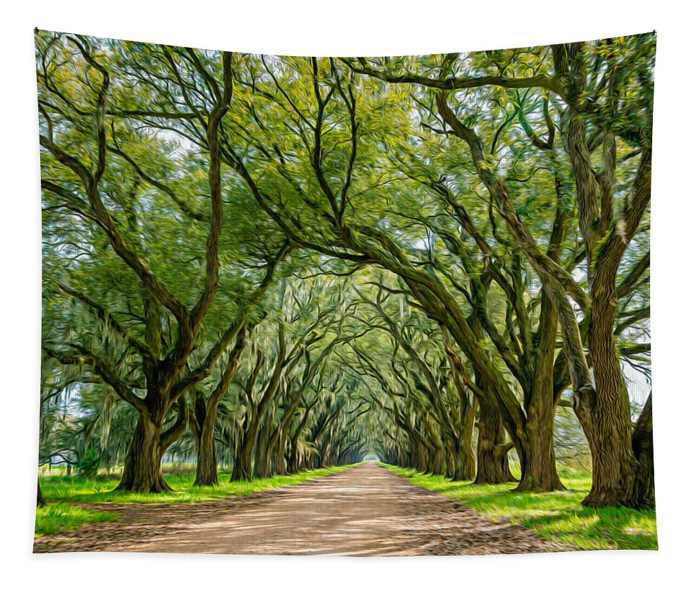 Evergreen Plantation Tapestry featuring the photograph Southern Journey by Steve Harrington