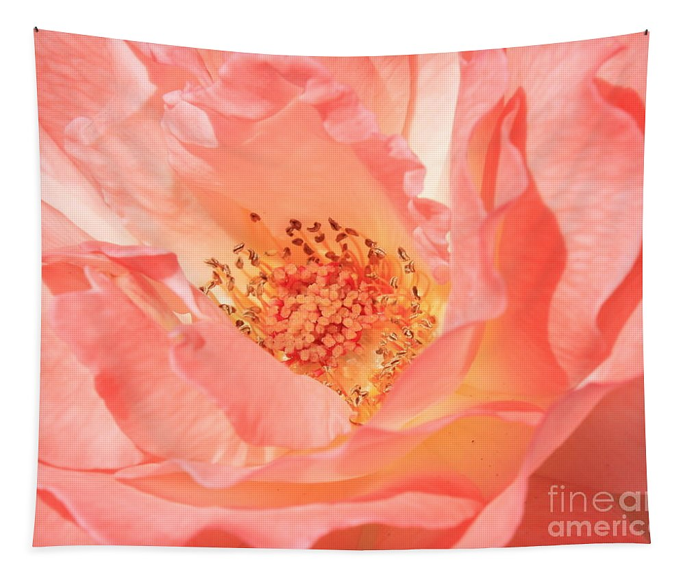 Pink Rose Tapestry featuring the photograph Stockton Rose by Carol Groenen