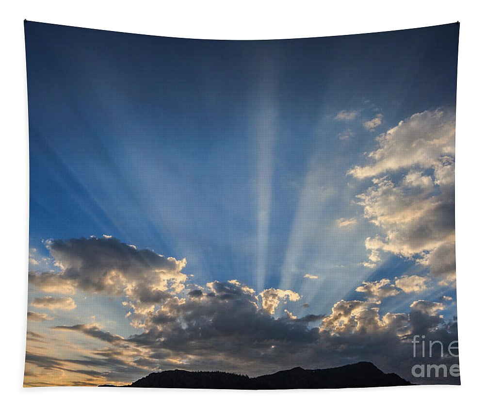 The Light Tapestry featuring the photograph The Light by Mitch Shindelbower