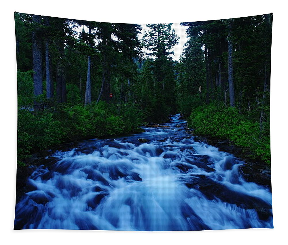 Rivers Tapestry featuring the photograph The Paradise River by Jeff Swan